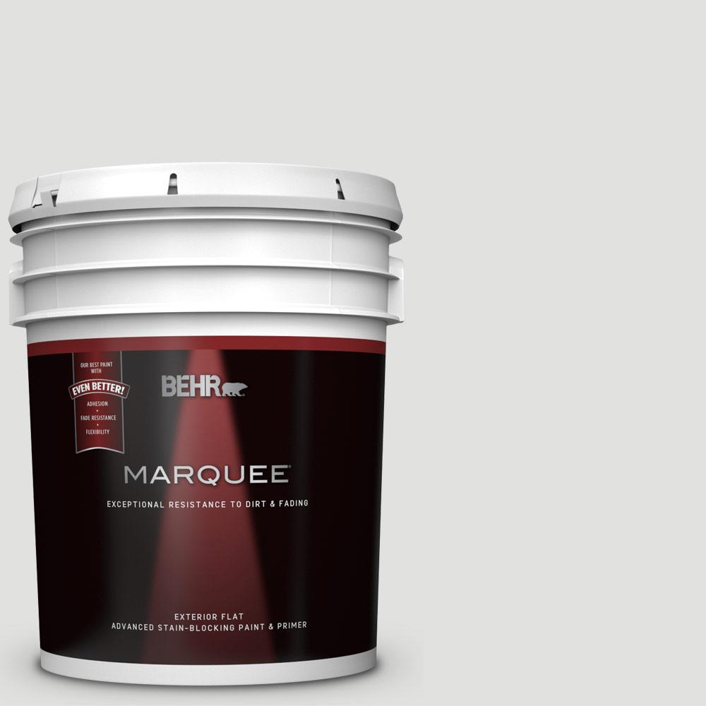 5 gal. #BL-W13 Silver Polish Flat Exterior Paint and Primer in One